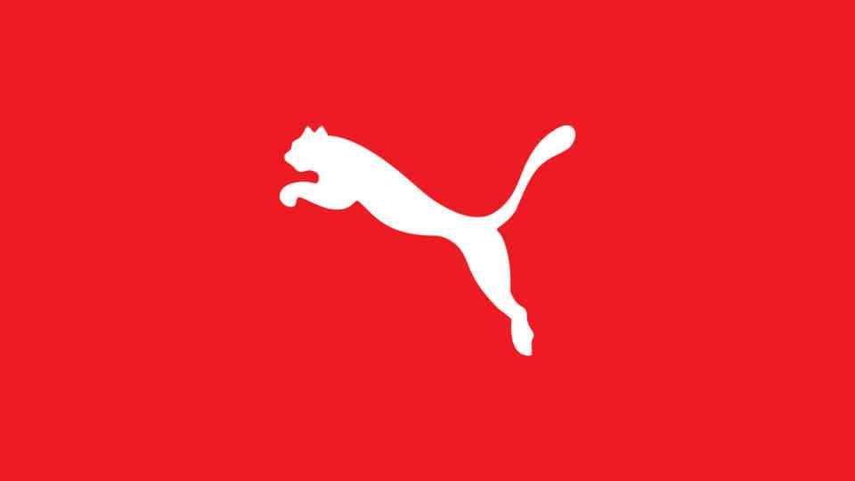 Katalogerstellung für Puma